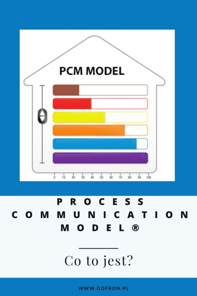 process communication model to narzędzie do badania kompetencji miękkich. Dowiedz się co to jest.